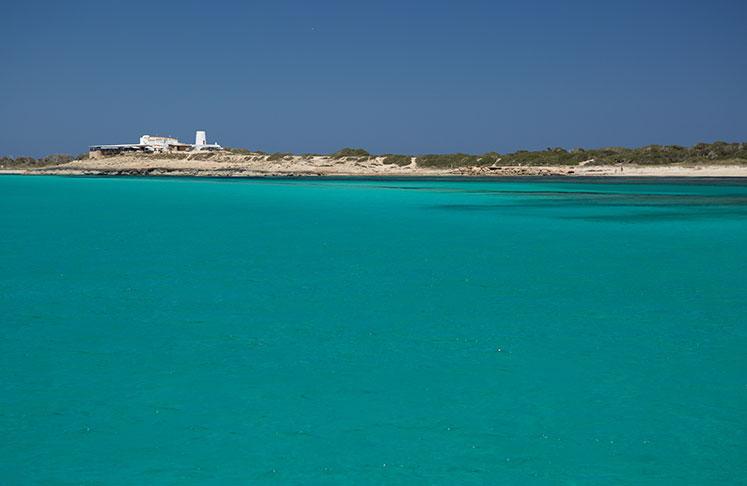 Moli de Sal Restaurant in Playa de ses Illetes